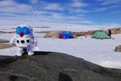 フックン船長南極レポート